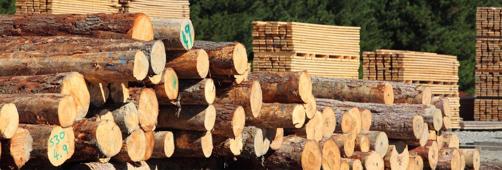 hardwood-slider2